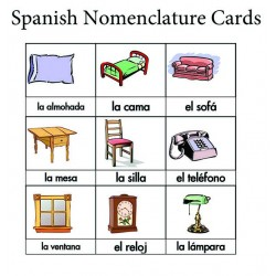 Spanish Nomenclature Cards