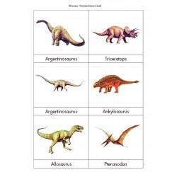 Dinosaur Nomenclature Cards